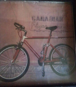 Stolen one of a kind bike,along with 2 others