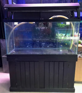 AFK 90gal Tank/Stand