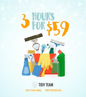 3 hours of cleaning for $59