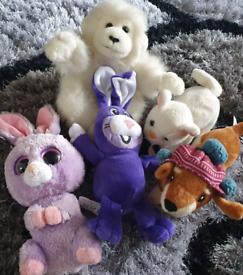 Bundle of 5 Teddys