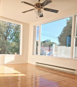 Bright, Very Clean, Renovated Apartment for Rent - Huntingdon