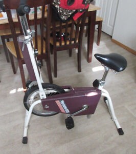 Venture Upright Bike