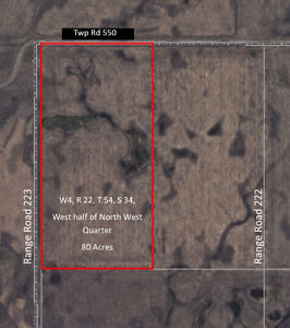 Land for Sale - 80 Acres