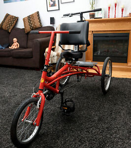 Special needs trike / Tricycle - Besoins particuliers