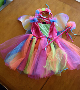 Costume Fée Papillon