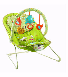 Fisher-Price Comfy Time Bouncer - Green Meadows