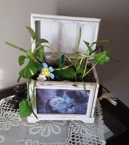 SOLID WOODEN PHOTO BOX PLANTER WITH LID London Ontario image 4
