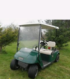 Golf buggy petrol looking