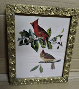 PRINT - Vintage Print of Cardinals in Vintage Metal Frame