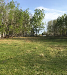 Are you ready to buy? Acreage for sale by owner