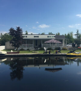Balsam Lake  Cottage / Trailer  (Special Edition) For Sale