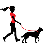 Experienced Dog Walker/Pet sitter for hire!