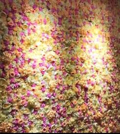 £95 ARTIFICIAL FLOWER WALLS/ HEDGE WALLl / BACK DROPS / BALLOON GARLA