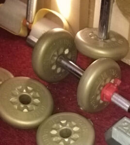 Weights: 2-1/2lbs discs, 20,25 lbs weights +
