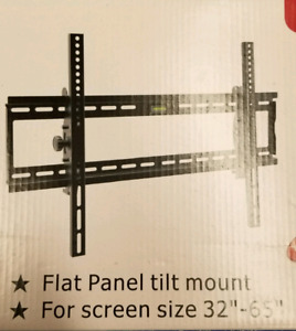 Professional TV Wall Mounting