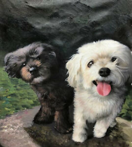 Hand-Painted Oil Portraits of your Pet by Experienced Artist