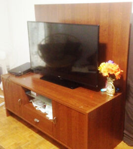 TV STAND WITH CUPBOARD - SOLID WOOD