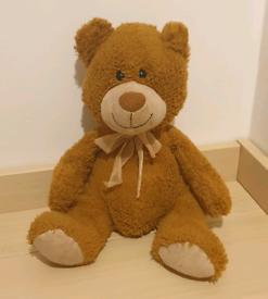 Teddy 🧸 Bear