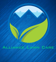 Professional lawn mowing and grass cutting service GREAT RATES