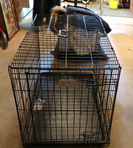 Fold-able Dog Kennel