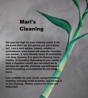 Mari's Cleaning