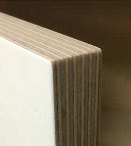Custom Baltic Birch Plywood Cabinets