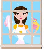 window cleaning, nettoyage de vitres