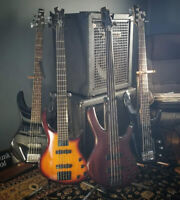 BASSIST/VOCALIST AVAILABLE