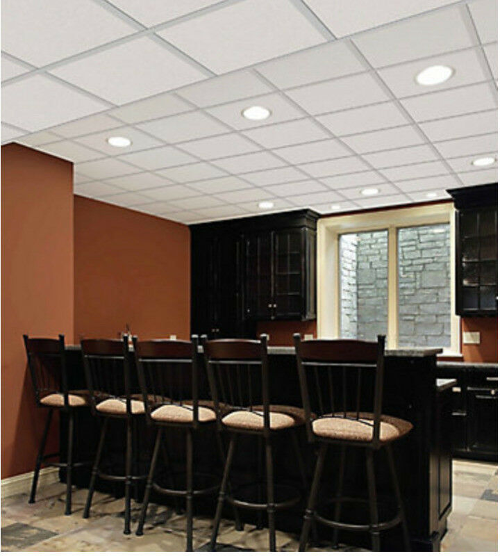 Cgc Mars R86785 Soundproofing Acoustical Ceiling Tiles Floors