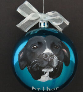 ** Hand Painted Pet Ornaments ~ Ready for Christmas **
