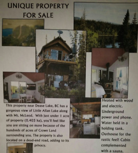 CABIN in DEASE LAKE, BC for sale.
