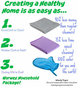 Cleaning without Chemicals - Norwex Leader Stratford Kitchener Area image 7