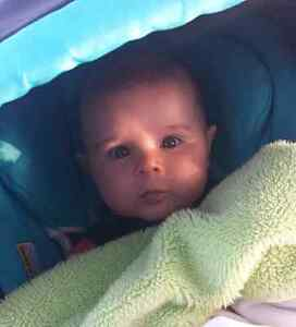 Single Mom & 4 Month Old Looking For Apartment Cambridge Kitchener Area image 1