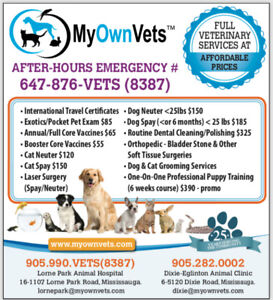 VERY AFFORDABLE VETERINARIAN