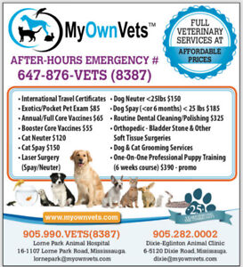 MISSISSAUGA SPAY/NEUTER CLINIC-VERY AFFORDABLE VET