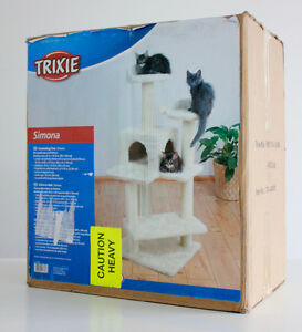 Cat Kitten Carpet Tree Scratching Tour Arbre Chat Chaton Tapis