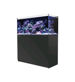 Red Sea Reefer 350 (please read)