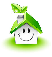 ashleys green clean service and products