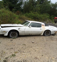 1978 Pontiac Trans Am Coupe (2 door)