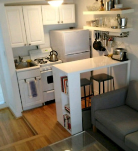 ISO- Studio or 1 bdrm suite or apartment for Dec 1 or 15th