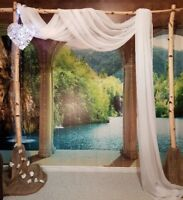 Rustic birch wedding arch for rent