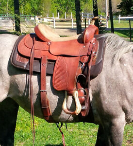17 inch saddle for sale