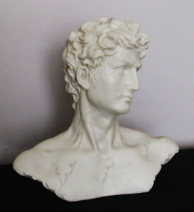 Bust of Michelangelo's David Stratford Kitchener Area image 1