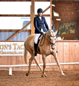 Riding lessons, part-board or full lease