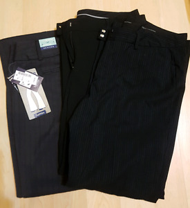 3 dress pants size 16 Petite