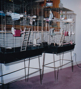 """2 Large  Bird Cages (EA=59.5""""H , 33"""" L, 15"""" W) &  Accessories"""