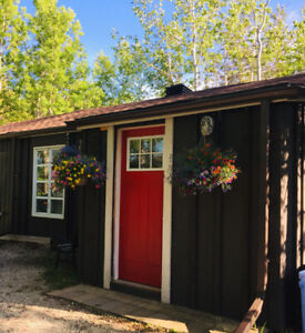 Collingwood 1 bedroom cottage/bungalow available annual lease