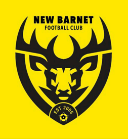 Are you looking to join an 11 a side team in Barnet?