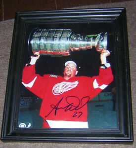 AARON WARD DETROIT RED WINGS AUTOGRAPH (CERTIFIED)