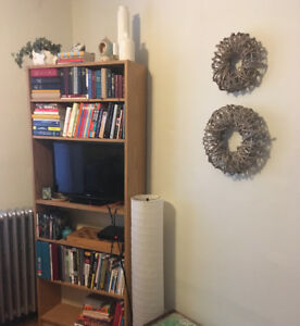 Book shelf for sale in perfect condition! (And more!)